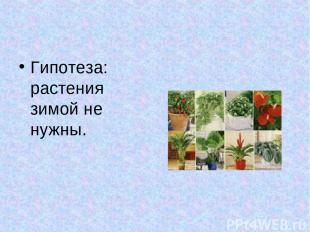 Гипотеза: растения зимой не нужны.