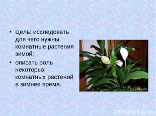 Цель: исследовать для чего нужны комнатные растения зимой; описать роль некоторы