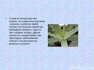 А ещё из литературы мы узнали, что комнатные растения полезны, особенно зимой, п