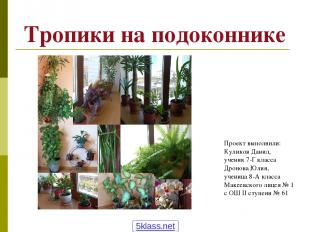 Тропики на подоконнике Проект выполнили: Куликов Данил, ученик 7-Г класса Дронов