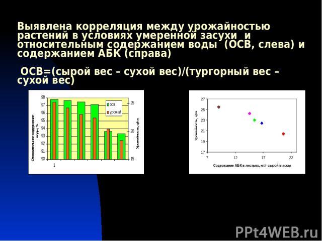 Выявлена корреляция между урожайностью растений в условиях умеренной засухи и относительным содержанием воды (ОСВ, слева) и содержанием АБК (справа) ОСВ=(сырой вес – сухой вес)/(тургорный вес – сухой вес)