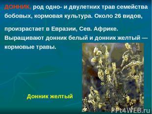 ДОННИК, род одно- и двулетних трав семейства бобовых, кормовая культура. Около 2