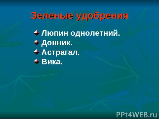 Зеленые удобрения Люпин однолетний. Донник. Астрагал. Вика.