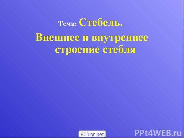 Тема: Стебель. Внешнее и внутреннее строение стебля 900igr.net