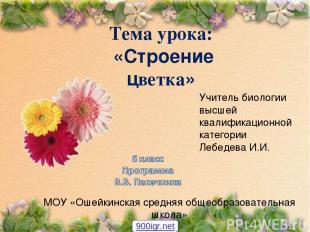 Тема урока: «Строение цветка» Учитель биологии высшей квалификационной категории