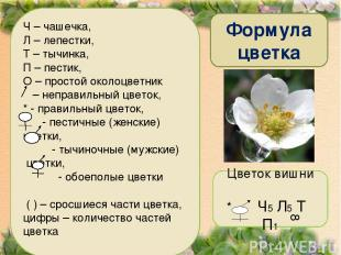 Формула цветка