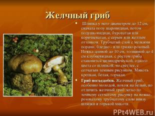Желчный гриб Шляпка у него диаметром до 12 см, сначала полу шаровидная, потом п