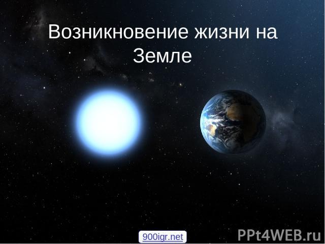 Возникновение жизни на Земле 900igr.net