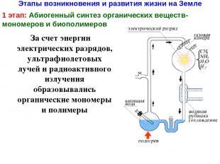 Этапы возникновения и развития жизни на Земле 1 этап: Абиогенный синтез органиче