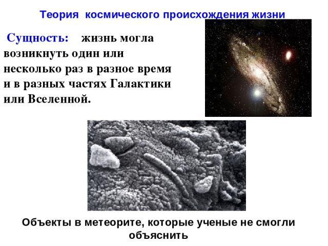 Сущность: жизнь могла возникнуть один или несколько раз в разное время и в разных частях Галактики или Вселенной. Теория космического происхождения жизни Объекты в метеорите, которые ученые не смогли объяснить
