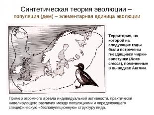 Синтетическая теория эволюции – популяция (дем) – элементарная единица эволюции