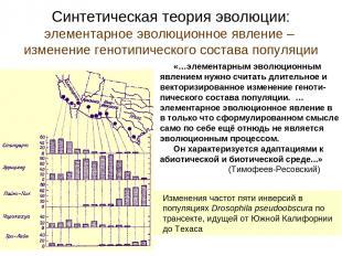 Синтетическая теория эволюции: элементарное эволюционное явление – изменение ген