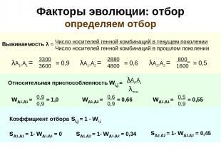 Факторы эволюции: отбор определяем отбор Относительная приспособленность wi,j =