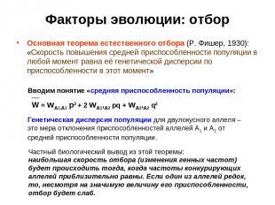 Факторы эволюции: отбор Основная теорема естественного отбора (Р. Фишер, 1930):