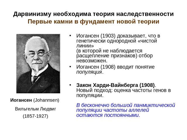 Дарвинизму необходима теория наследственности Первые камни в фундамент новой теории Иогансен (1903) доказывает, что в генетически однородной «чистой линии» (в которой не наблюдается расщепление признаков) отбор невозможен. Иогансен (1908) вводит пон…