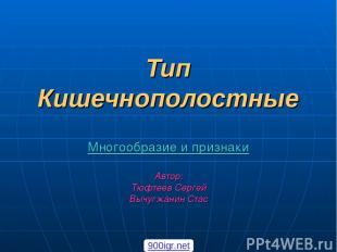 Тип Кишечнополостные Многообразие и признаки Автор: Тюфтеев Сергей Вычугжанин Ст
