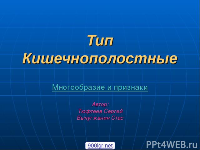 Тип Кишечнополостные Многообразие и признаки Автор: Тюфтеев Сергей Вычугжанин Стас 900igr.net