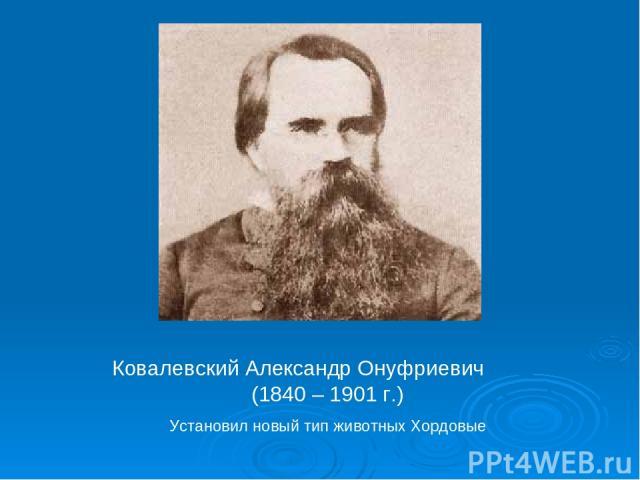 Ковалевский Александр Онуфриевич (1840 – 1901 г.) Установил новый тип животных Хордовые