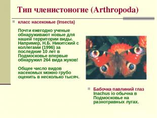 Тип членистоногие (Arthropoda) класс насекомые (Insecta) Почти ежегодно ученые о