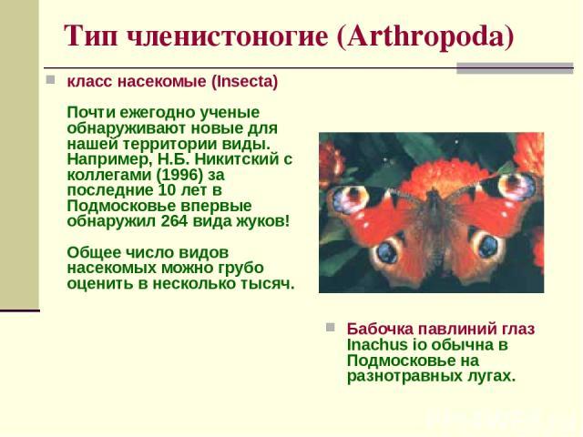 Тип членистоногие (Arthropoda) класс насекомые (Insecta) Почти ежегодно ученые обнаруживают новые для нашей территории виды. Например, Н.Б. Никитский с коллегами (1996) за последние 10 лет в Подмосковье впервые обнаружил 264 вида жуков! Общее число …