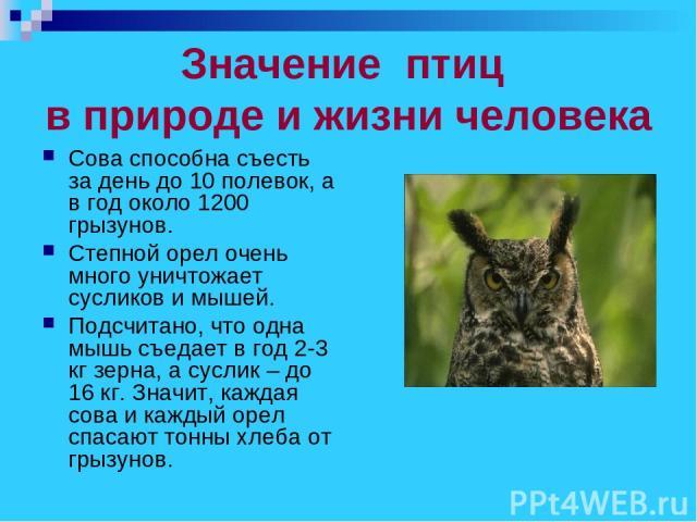 роль птиц в природе и для челтвека про