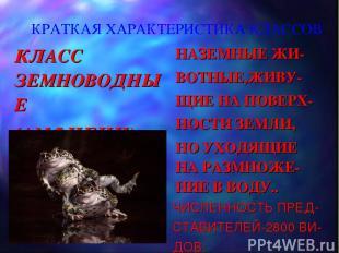КРАТКАЯ ХАРАКТЕРИСТИКА КЛАССОВ КЛАСС ЗЕМНОВОДНЫЕ (АМФИБИИ) НАЗЕМНЫЕ ЖИ- ВОТНЫЕ,Ж