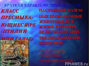 КРАТКАЯ ХАРАКТЕРИСТИКА КЛАССОВ КЛАСС ПРЕСМЫКА- ЮЩИЕСЯ(РЕ-ПТИЛИИ ИЛИ ГАДЫ) НАСТОЯ