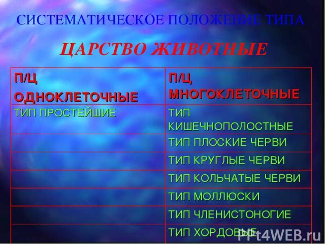 СИСТЕМАТИЧЕСКОЕ ПОЛОЖЕНИЕ ТИПА ЦАРСТВО ЖИВОТНЫЕ П/Ц ОДНОКЛЕТОЧНЫЕ П/Ц МНОГОКЛЕТОЧНЫЕ ТИП ПРОСТЕЙШИЕ ТИП КИШЕЧНОПОЛОСТНЫЕ ТИП ПЛОСКИЕ ЧЕРВИ ТИП КРУГЛЫЕ ЧЕРВИ ТИП КОЛЬЧАТЫЕ ЧЕРВИ ТИП МОЛЛЮСКИ ТИП ЧЛЕНИСТОНОГИЕ ТИП ХОРДОВЫЕ
