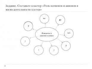 Задание. Составьте кластер «Роль катионов и анионов в жизнедеятельности клетки»