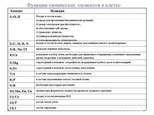 Функции химических элементов в клетке Элемент Функция 1) О, Н Входят в состав во