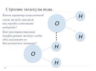 Строение молекулы воды. О H H H H O Каков характер ковалентной связи между атомо