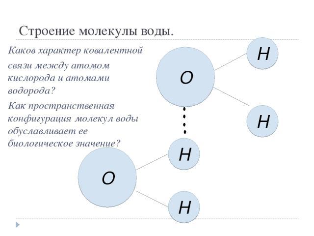 Строение молекулы воды. О H H H H O Каков характер ковалентной связи между атомом кислорода и атомами водорода? Как пространственная конфигурация молекул воды обуславливает ее биологическое значение?