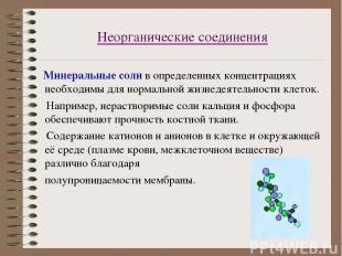Неорганические соединения Минеральные соли в определенных концентрациях необходи
