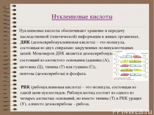 Нуклеиновые кислоты Нуклеиновые кислоты обеспечивают хранение и передачу наследс