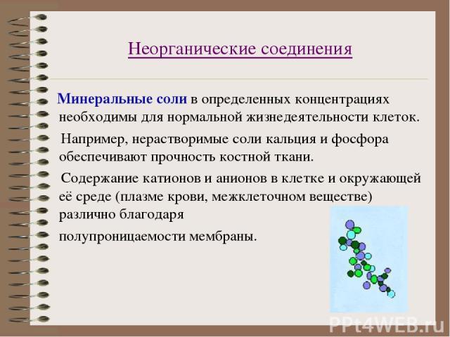Неорганические соединения Минеральные соли в определенных концентрациях необходимы для нормальной жизнедеятельности клеток. Например, нерастворимые соли кальция и фосфора обеспечивают прочность костной ткани. Содержание катионов и анионов в клетке и…