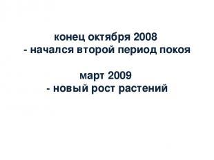 конец октября 2008 - начался второй период покоя март 2009 - новый рост растений