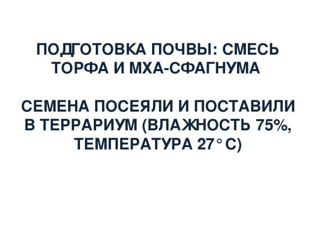 ПОДГОТОВКА ПОЧВЫ: СМЕСЬ ТОРФА И МХА-СФАГНУМА СЕМЕНА ПОСЕЯЛИ И ПОСТАВИЛИ В ТЕРРАРИУМ (ВЛАЖНОСТЬ 75%, ТЕМПЕРАТУРА 27° С)