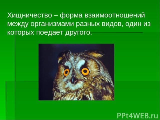 Хищничество – форма взаимоотношений между организмами разных видов, один из которых поедает другого.