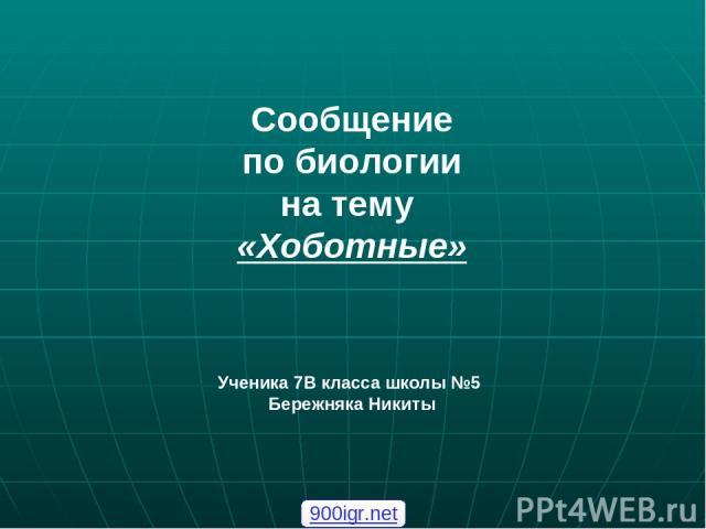 Сообщение по биологии на тему «Хоботные» Ученика 7В класса школы №5 Бережняка Никиты 900igr.net