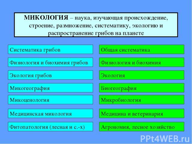 МИКОЛОГИЯ – наука, изучающая происхождение, строение, размножение, систематику, экологию и распространение грибов на планете
