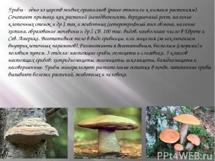 Грибы - одно из царств живых организмов (ранее относили к низшим растениям). Соч