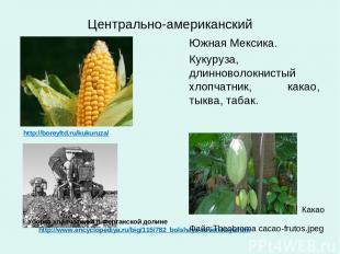 Центрально-американский http://boreyltd.ru/kukuruza/ Южная Мексика. Кукуруза, дл