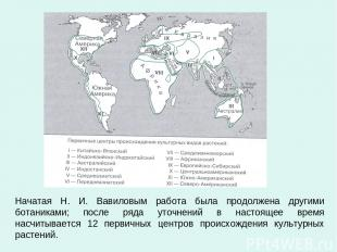 Начатая Н. И. Вавиловым работа была продолжена другими ботаниками; после ряда ут