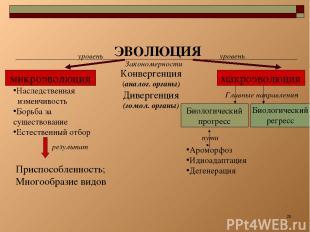 * ЭВОЛЮЦИЯ микроэволюция макроэволюция Конвергенция (аналог. органы) Дивергенция