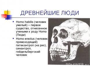 ДРЕВНЕЙШИЕ ЛЮДИ Homo habilis (человек умелый) – первое существо, отнесенное учен