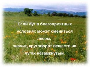 Если луг в благоприятных условиях может смениться лесом, значит, круговорот веще
