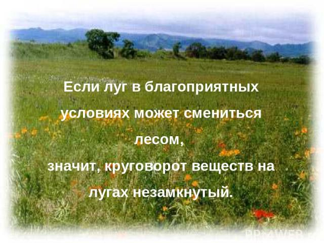 Если луг в благоприятных условиях может смениться лесом, значит, круговорот веществ на лугах незамкнутый.