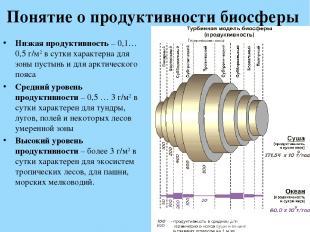 Понятие о продуктивности биосферы Низкая продуктивность – 0,1…0,5 г/м2 в сутки х