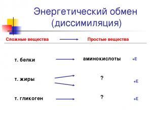 Энергетический обмен (диссимиляция)