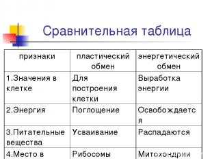 Сравнительная таблица признаки пластический обмен энергетический обмен 1.Значени